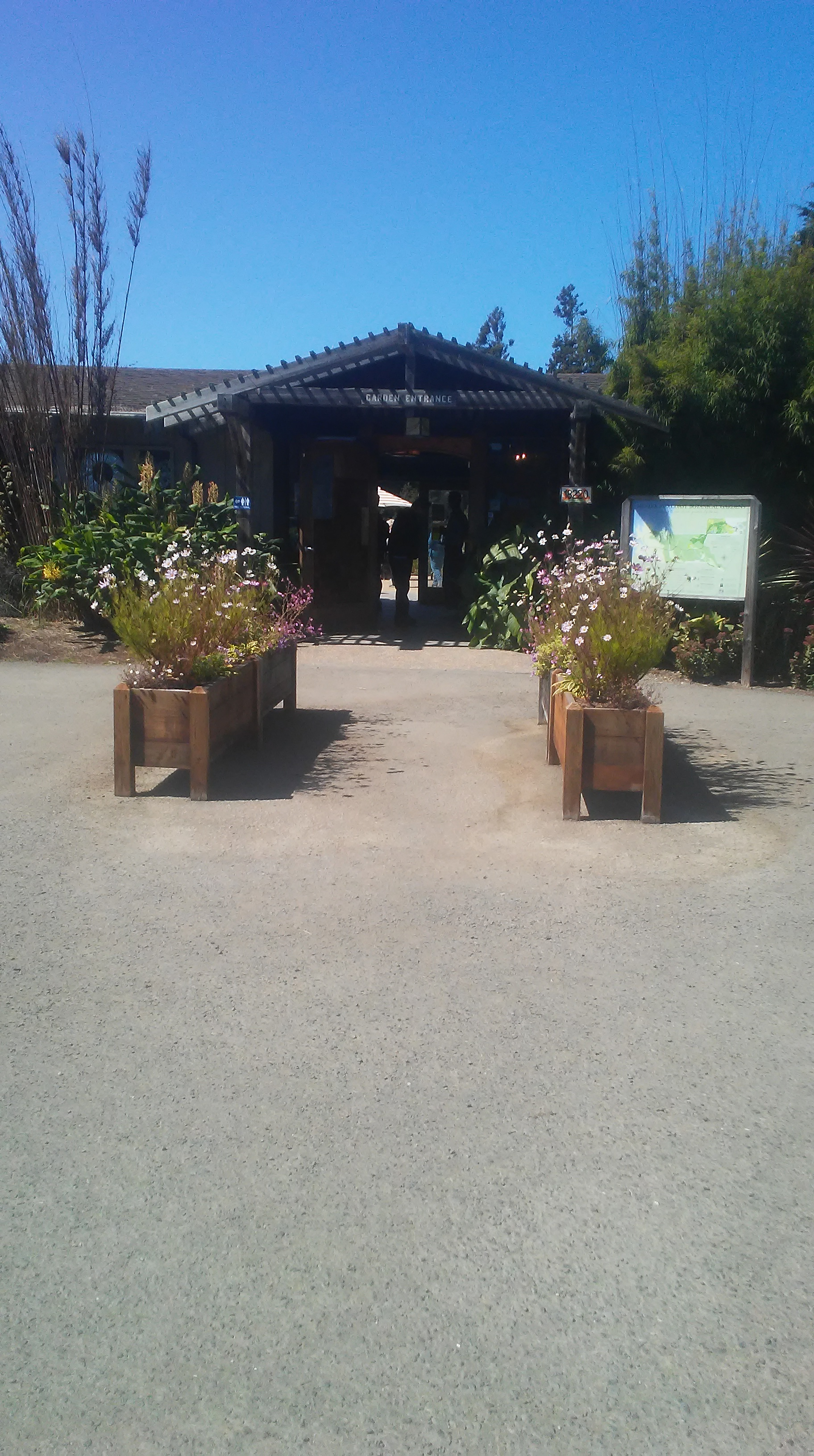 Entrance to building with redwood planter boxes on either side filled with pink blossoms.